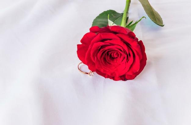 ライトテーブルに赤いバラの結婚指輪 無料写真