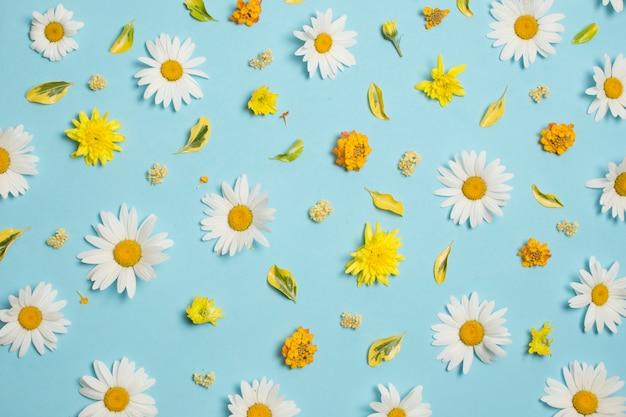 Композиция из чудесных красочных цветов Бесплатные Фотографии