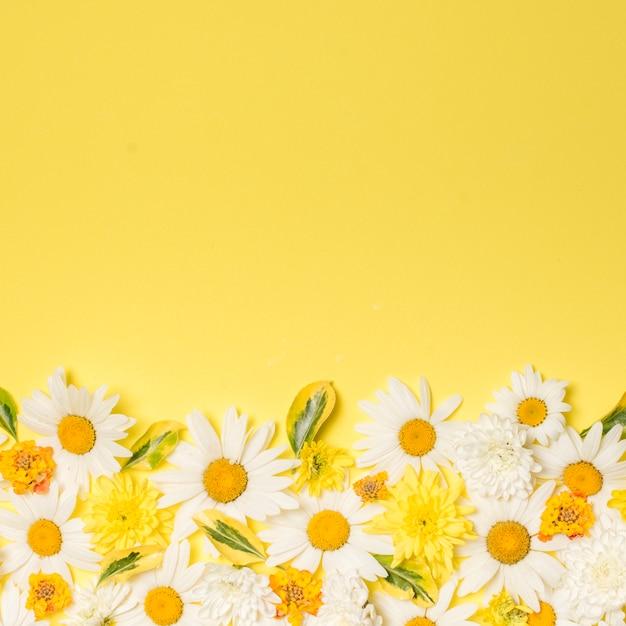 Композиция из чудесных белых цветов Бесплатные Фотографии