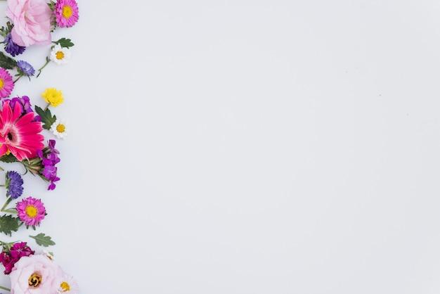 色とりどりの花の組成 無料写真