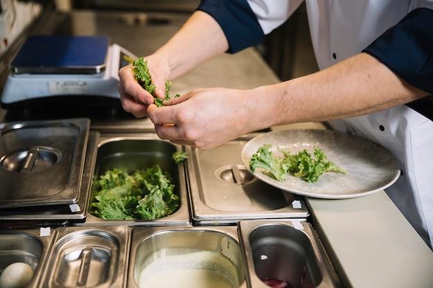 皿にパッティンググリーンレタスを調理します。 無料写真