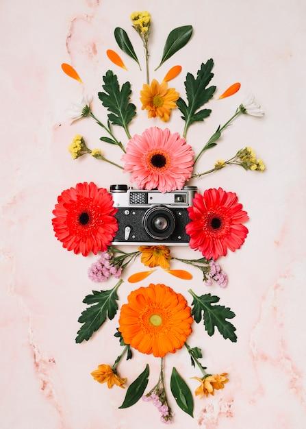 大理石のテーブルの上のカメラと花芽 無料写真