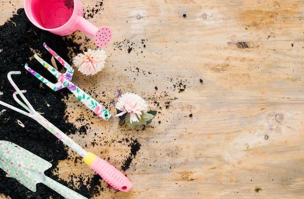 ピンクのじょうろと菊の花の園芸工具。木製の背景に対して空白の土 無料写真
