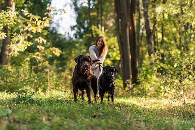 公園で犬を連れて歩いて笑顔の女性 無料写真