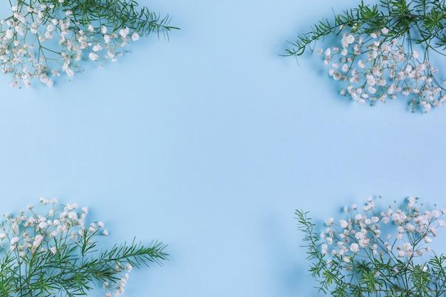 ジプソフィラと青い背景の隅に葉 無料写真