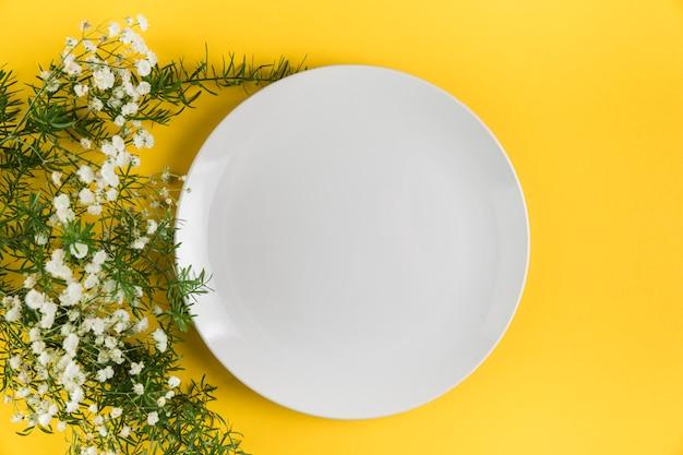 黄色の背景に石膏の花の近くの白い空の皿 無料写真