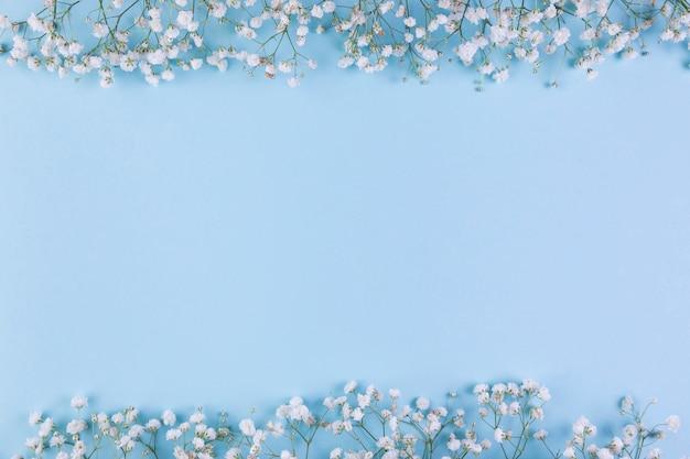Граница цветка белого дыхания младенца на голубой предпосылке с космосом экземпляра для записи текста Бесплатные Фотографии
