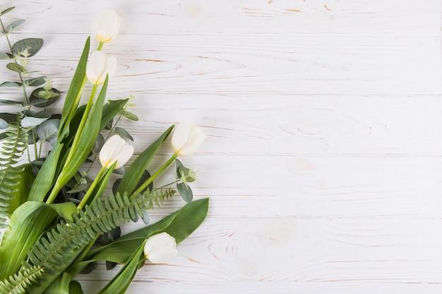 テーブルの上のシダの葉と白いチューリップの花 無料写真
