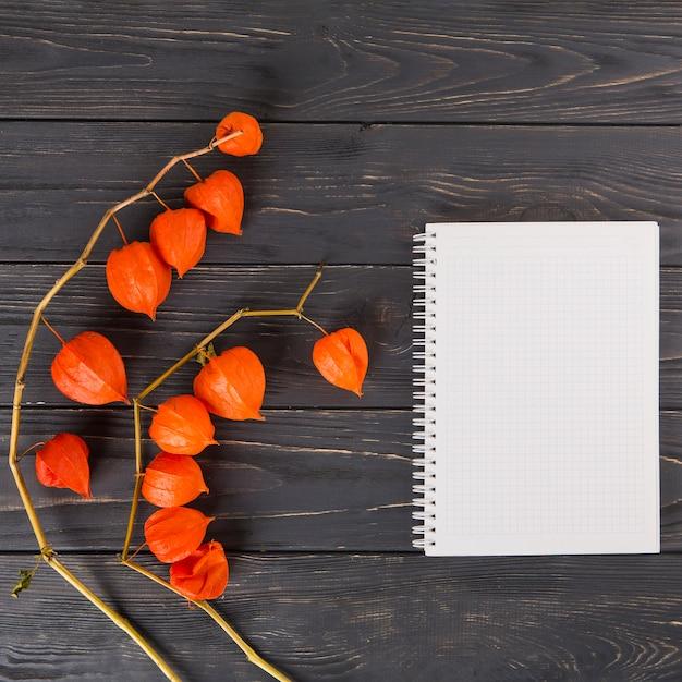 Физалис ветви с ноутбуком на столе Бесплатные Фотографии