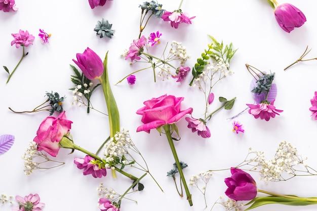 ライトテーブルの上に散らばってさまざまな花 無料写真