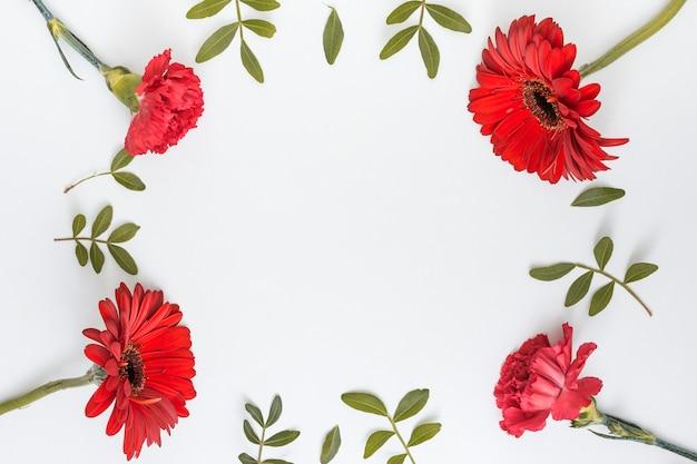 赤い花と緑の葉からフレーム 無料写真