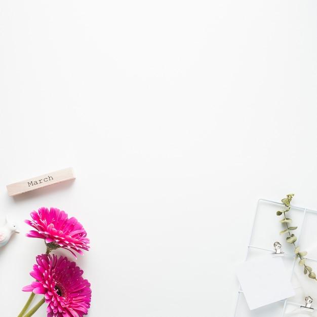 Мартовская надпись с цветами герберы и бумагой Бесплатные Фотографии