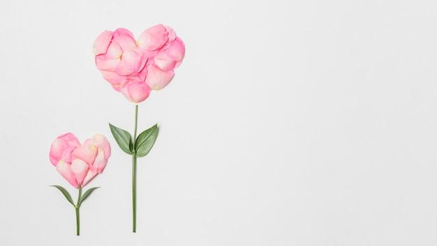 Композиция из розовых цветов в форме сердечек Бесплатные Фотографии