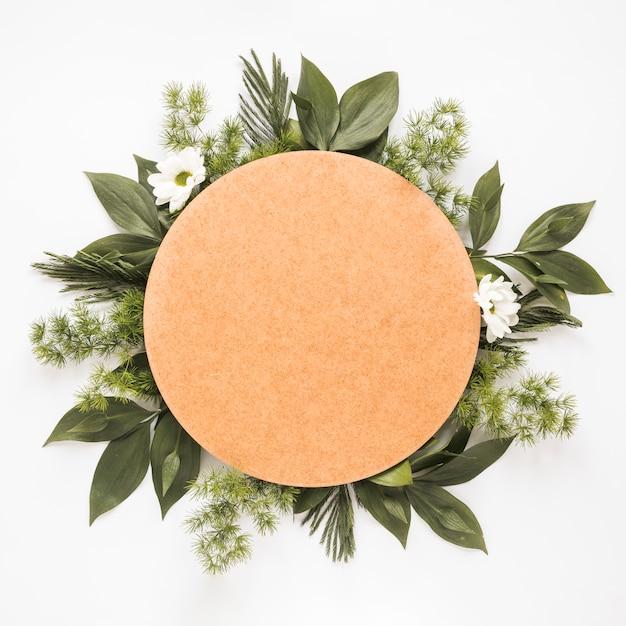 緑の植物の枝に丸い紙 無料写真