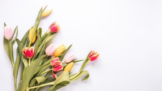 白いテーブルの上の明るいチューリップの花 無料写真