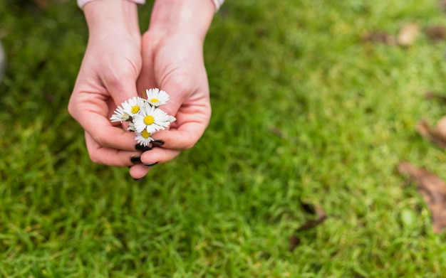 土地の芝生の近くの小さな白い花を持つ女性 無料写真