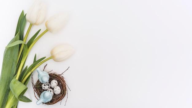 Тюльпаны с перепелиными яйцами в гнезде Бесплатные Фотографии