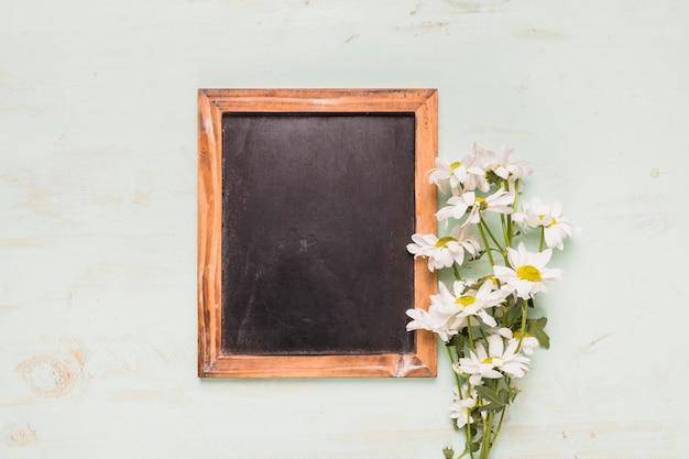 カモミールとフレーム黒板 無料写真