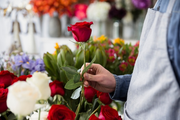赤いバラを手で押し、男性の花屋のクローズアップ 無料写真