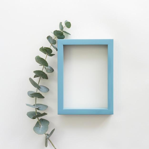 Зеленые листья и синяя рамка пустой пустой фоторамка на белом фоне Бесплатные Фотографии