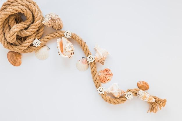 Морские раковины с морской веревкой на столе Бесплатные Фотографии