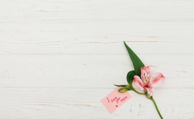 私はあなたを愛してピンクの花でお母さんの碑文 無料写真