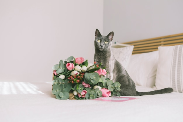Букет цветов с серым котом на кровати Бесплатные Фотографии