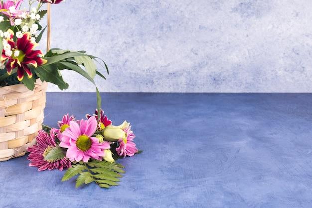 色とりどりの花と熱帯植物の妨害 無料写真