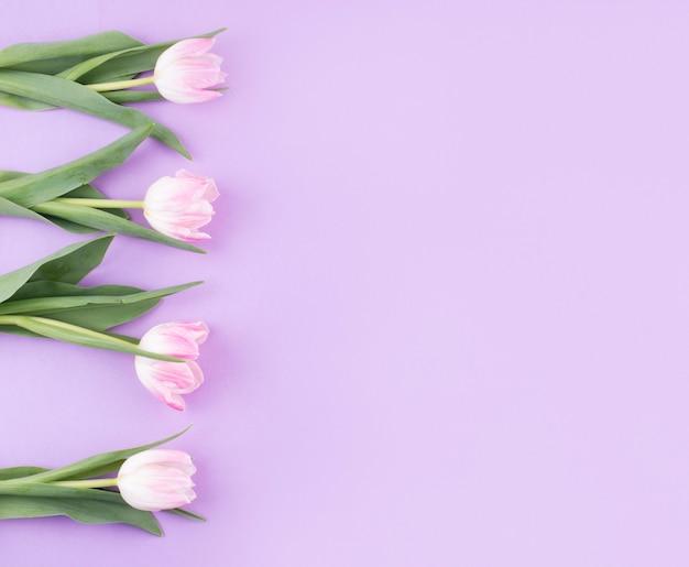 テーブルの上のピンクのチューリップの花 無料写真