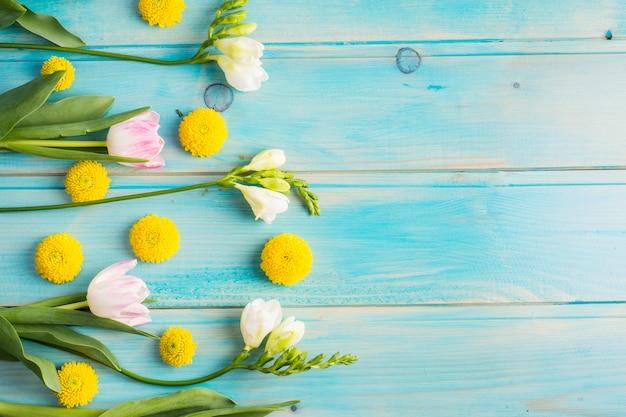 新鮮な黄色い花のつぼみと緑の茎に咲く 無料写真