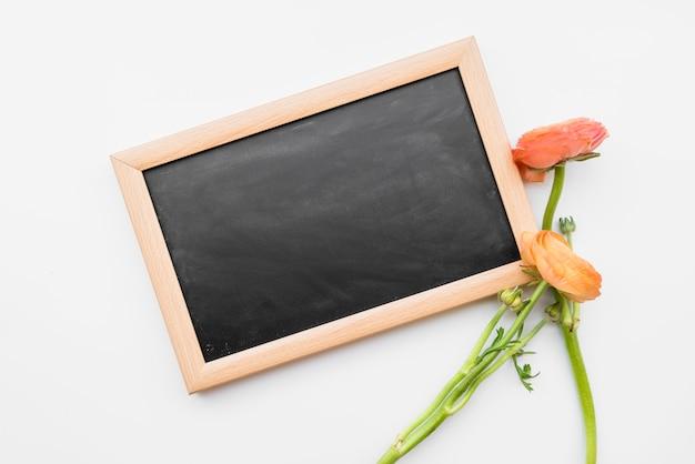 黒板と白地に赤い花 無料写真