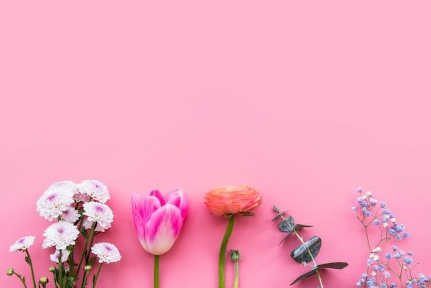 Ряд различных красочных свежих цветов на стеблях Бесплатные Фотографии