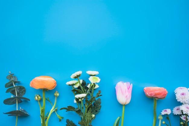 茎にさまざまなカラフルな花 無料写真