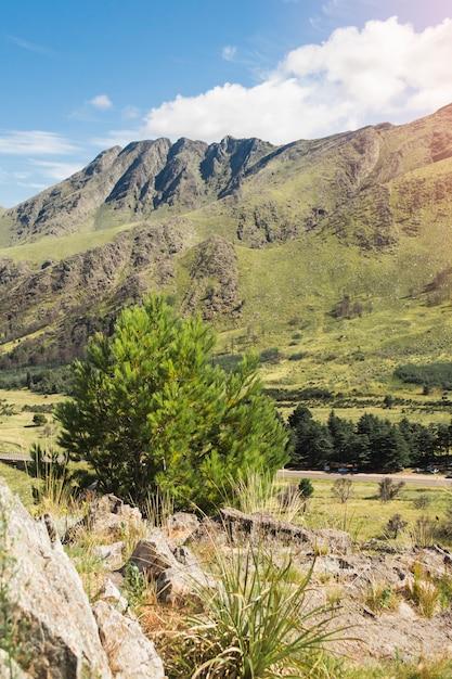 緑の山々の美しい景色 無料写真