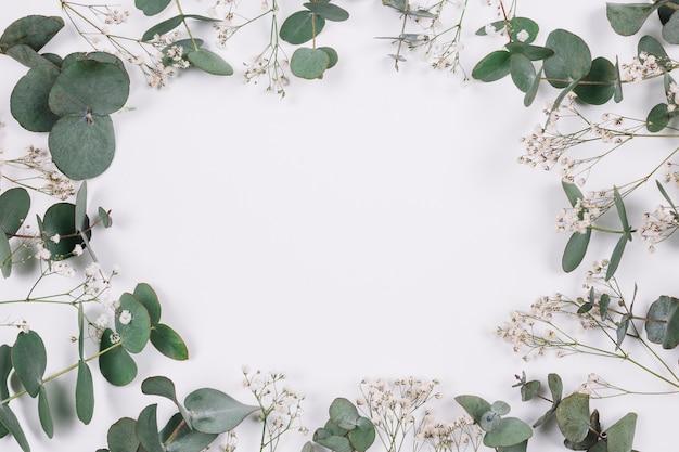 自然な装飾 無料写真