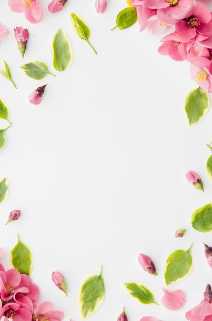 Декоративная цветочная рамка Бесплатные Фотографии