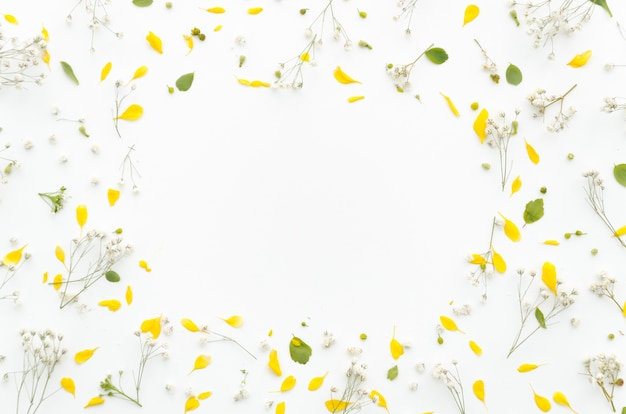 花の装飾的なフレーム 無料写真