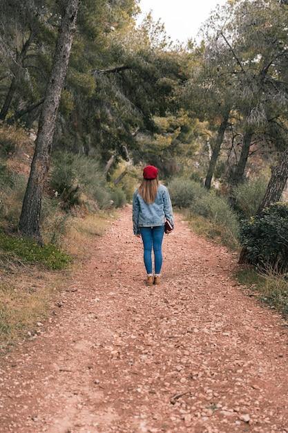 登山道に立っている女性の後姿 無料写真