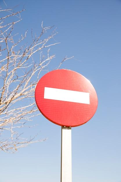Красный знак остановки на улице перед голым деревом и голубым небом Бесплатные Фотографии