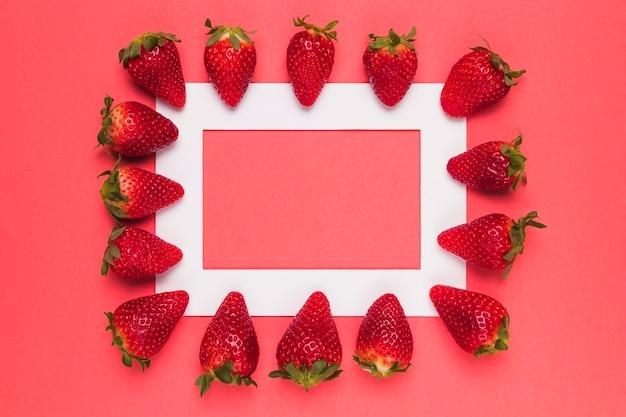 Спелая сочная клубника выстроились на белой рамке на розовом фоне Бесплатные Фотографии