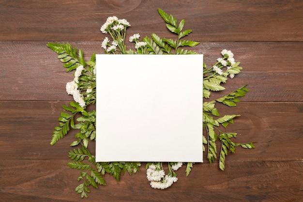 緑の葉に囲まれた紙 無料写真