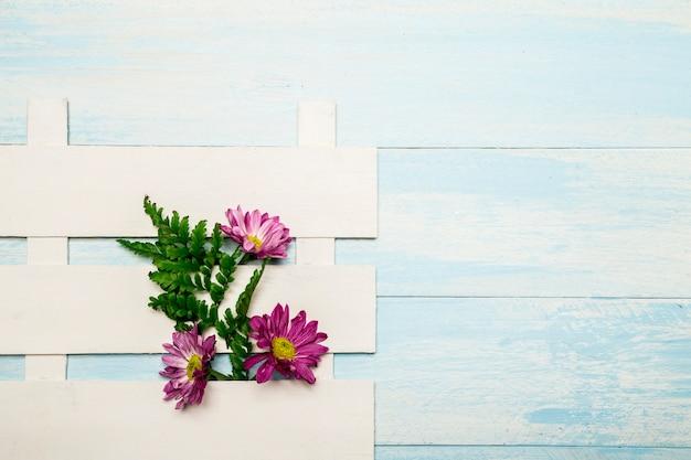 白いフェンスのピンクの花 無料写真