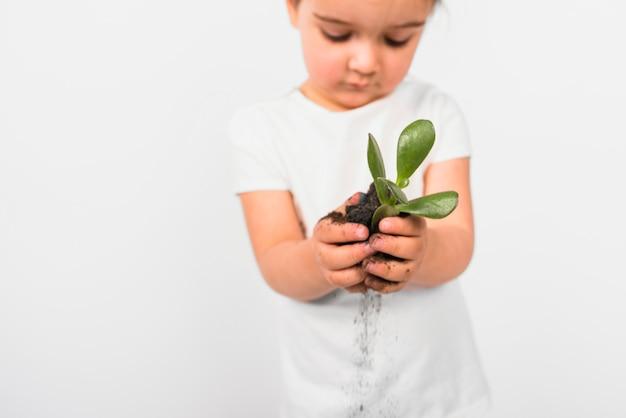 Расфокусированные девушка держит растение в руке на белом фоне Бесплатные Фотографии
