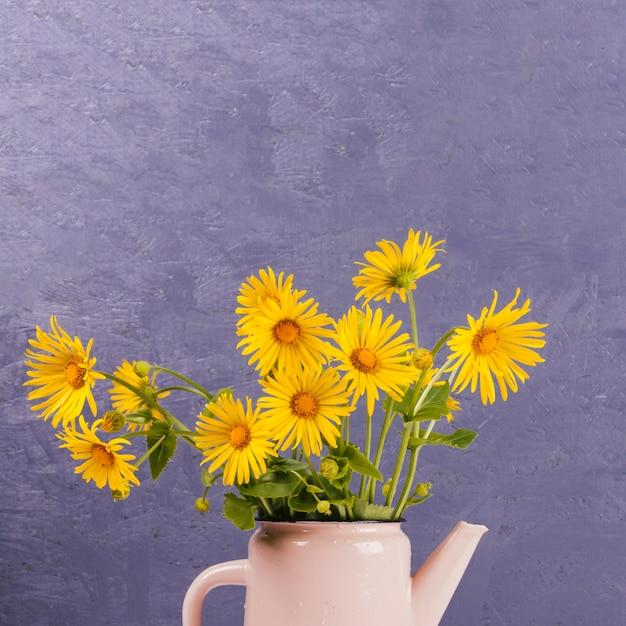 じょうろでデイジーの花 無料写真