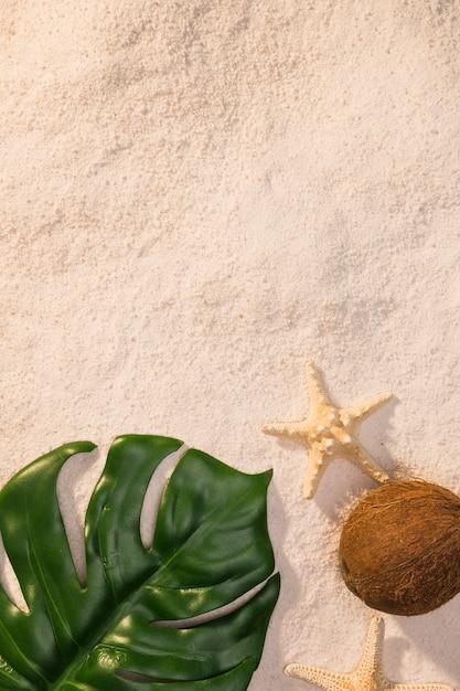 ビーチでヒトデと緑の葉 無料写真