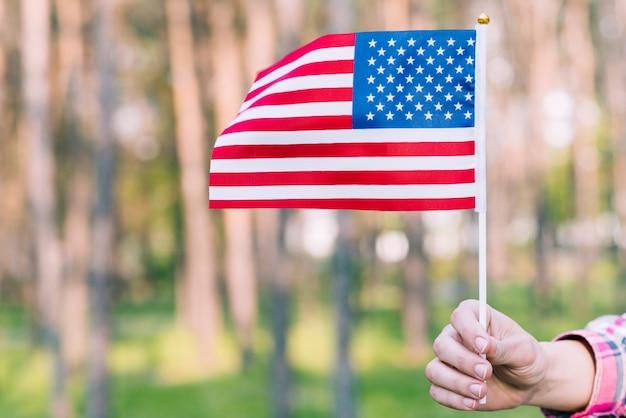 Рука с развевающимся американским флагом Бесплатные Фотографии