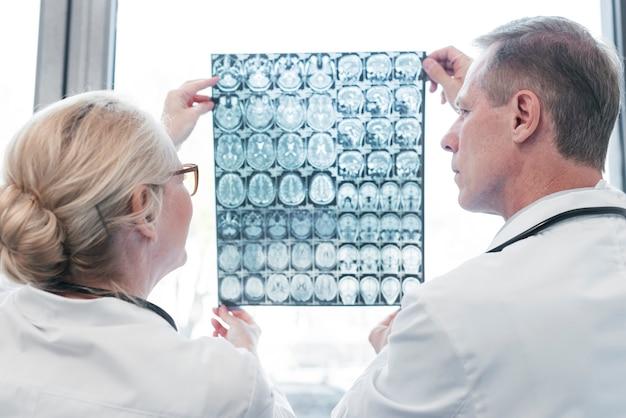 放射線写真を分析する医師 無料写真