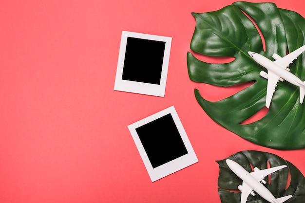 飛行機の構成インスタントフレームと植物の葉 無料写真