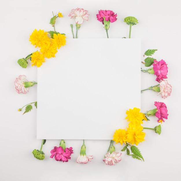 Вид сверху из свежих цветов Бесплатные Фотографии