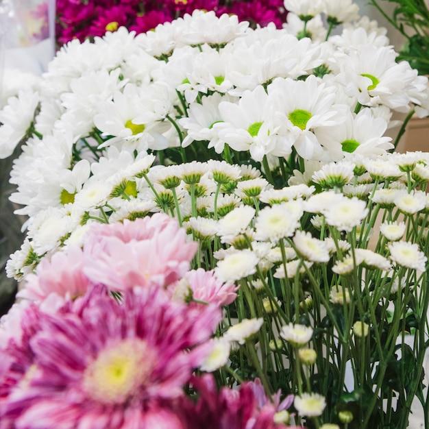 白いデイジーとカモミールの花束の花のクローズアップ 無料写真